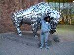doodeleeedooo raging buffalo